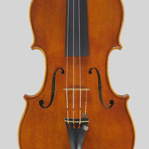 nettuno-violin