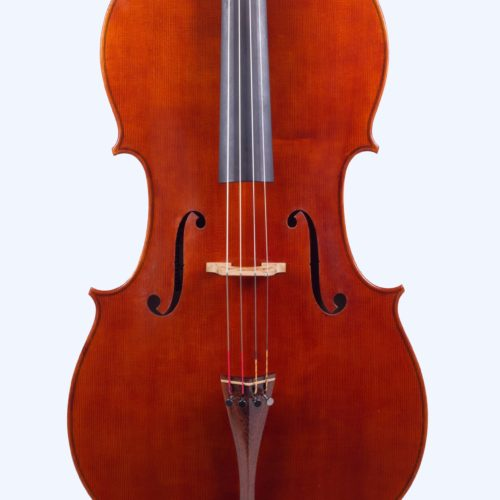 cello-selene-2