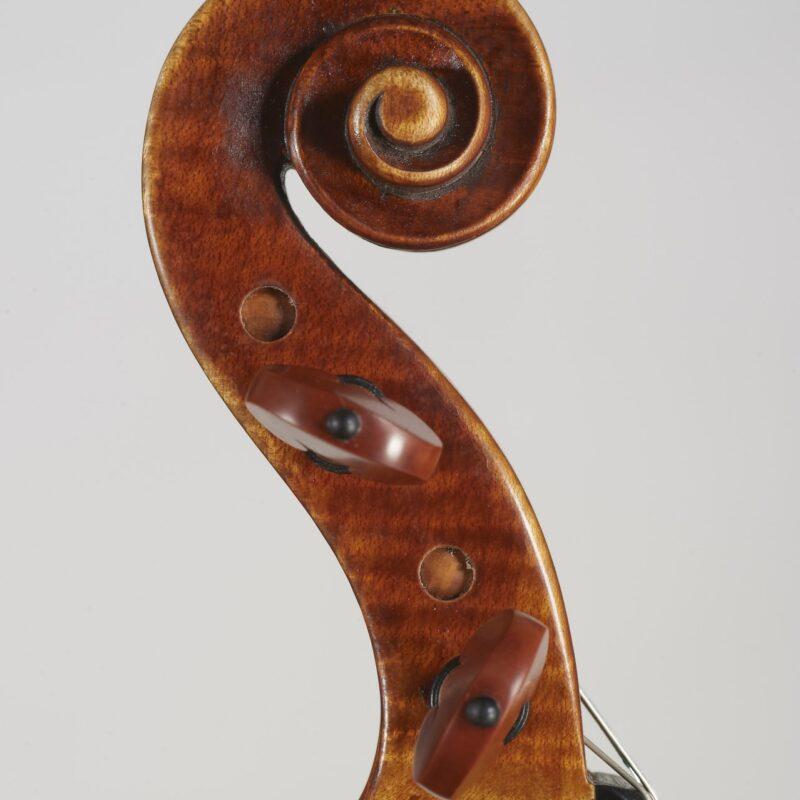 zeus-violino-4